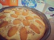 Apricot Friand Cake